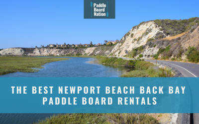 The Best Newport Beach Back Bay Paddle Board Rentals