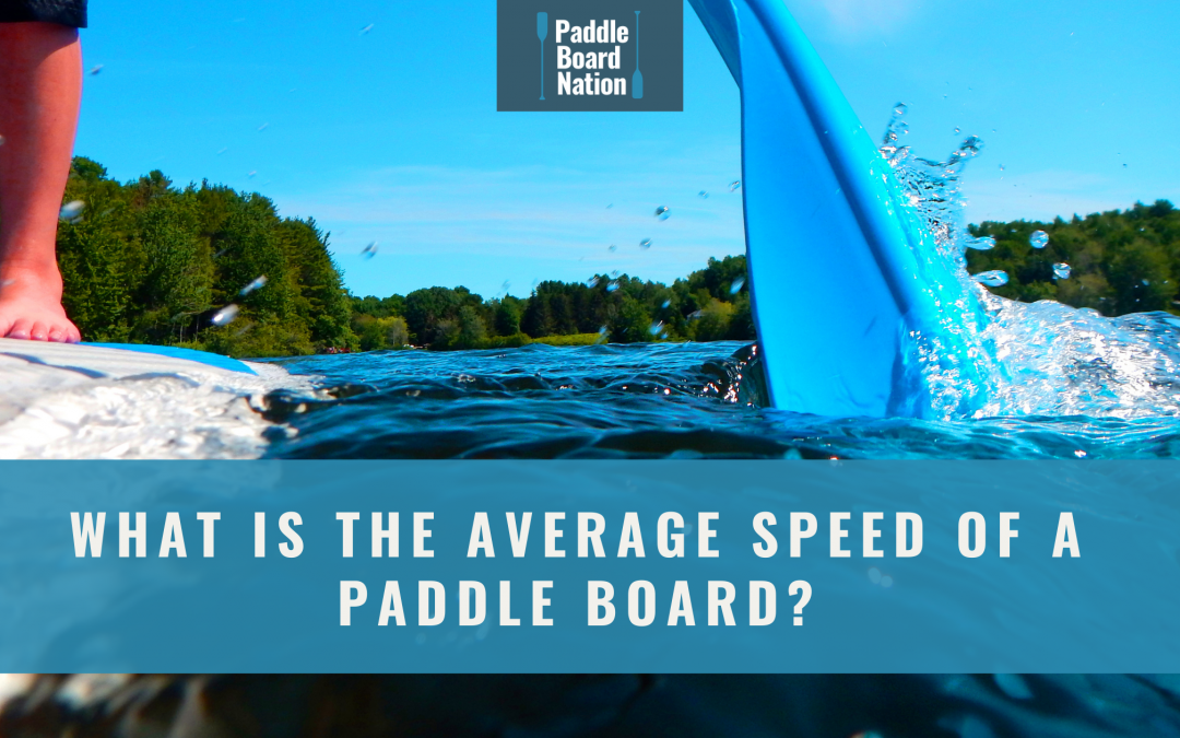 What Is The Average Speed of a Paddle Board?