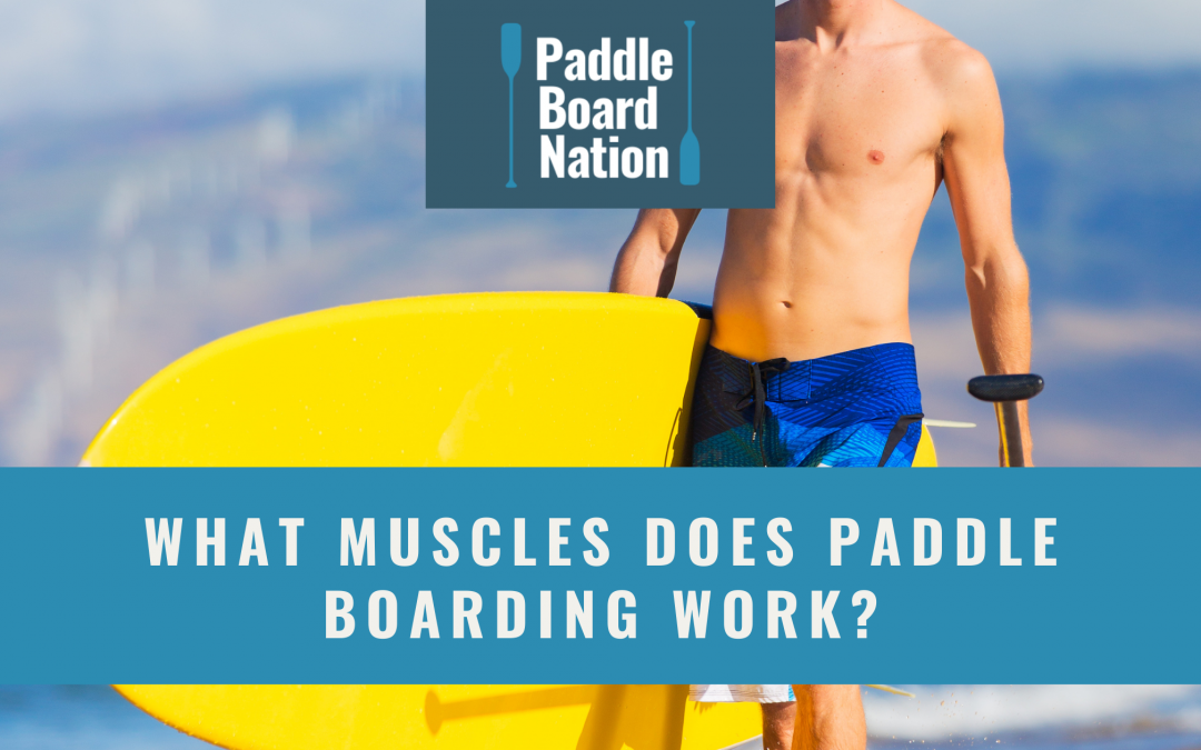 What Muscles Does Paddle Boarding Work?