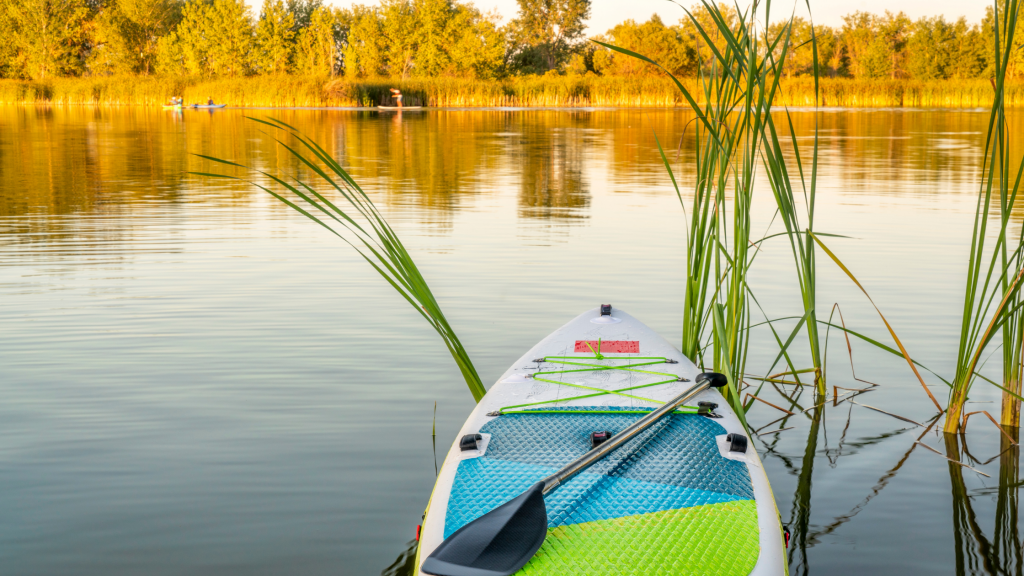 Choosing The Right Paddle Board (SUP) For Paddleboarding With A Dog