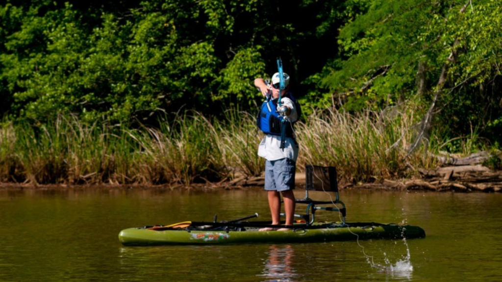 How Do You Catch Fish Paddle Board Bowfishing?