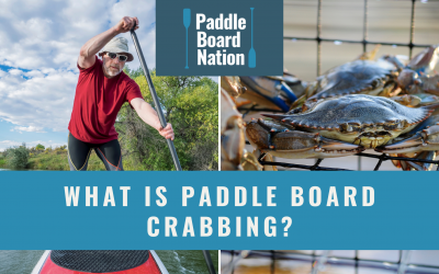 What Is Paddle Board Crabbing?
